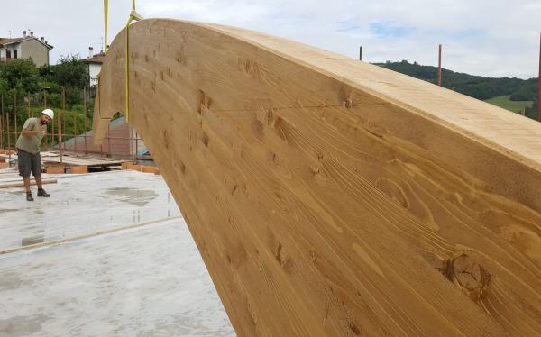 EDILIZIA GREEN. Perché scegliere il legno per la tua nuova costruzione